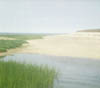 Salt Marsh, Cape Cod